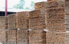 Green lumber waiting for the Kiln