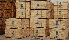 Lincoln Companies - parent company of Lincoln Lumber
